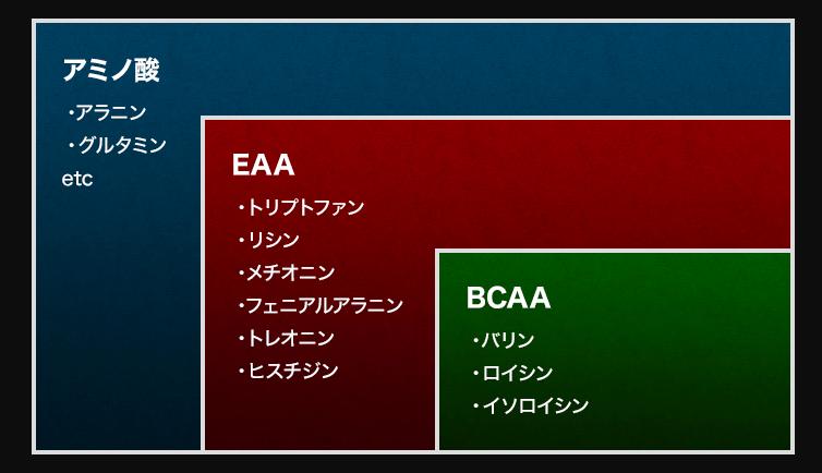 HMB極ボディ_EAA