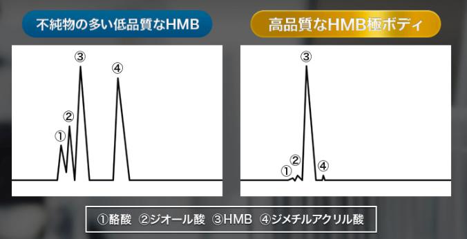 HMB極ボディ_無添加